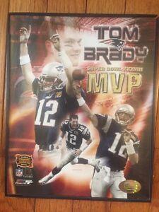 Tom Brady PHOTO N.E. Patriots MVP Super Bowl XXXVIII '04 PhotoFile Touchdown Pic