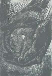 Original Art Woodcut Print Bambino Baby Rat Mouse in Hand Wood Engraving Silver