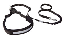 Dingo Canicross Belt and Leash, Multifunction Jogging Set with Shock-Absorber,