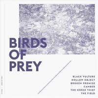 Birds Of Prey The Album Original Motion Picture Soundtrack Vinyl Record New Ebay