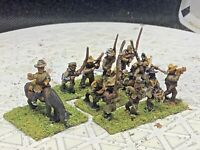15mm Handpainted ACW Confederate Infantry w/Command