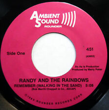 RANDY & The RAINBOWS 45 Remember (Walking..) AMBIENT SOUND lbl 1985 press e5539