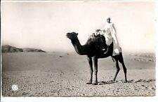 CP AFRIQUE - Afrique du Nord - Scènes et Types - Sous le Grand Soleil