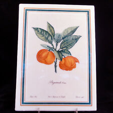 """FRUIT PLAQUES by Tattau made Germany Set of 6 9.5"""" tall Porcelain NEW NEVER USED"""
