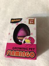Hatching Flamingo Egg Growing Pet General