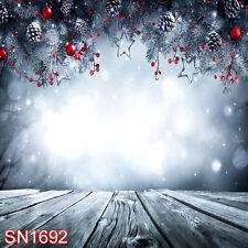 Xmas Tree Snow Winter Outdoor 10x10 FT PHOTO SCENIC BACKGROUND BACKDROP SN1692