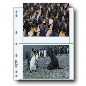 """50 PRINT FILE 5 x 7"""" Prints Photo Pages Sleeves Clear Archival Preserver 57-4P i"""
