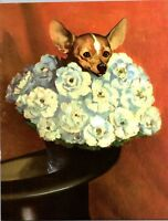 Chihuahua in a Bouquet of Flowers Wesley Dennis Book plate print