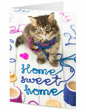 Mischievous cute cat kitten playing with wool says HOME SWEET HOME card