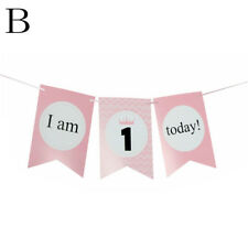 Boy Girl Crown First Birthday Chair Flag Banner Baby One Year Old Birthday WO.