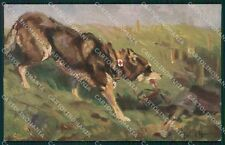 Red Cross Dog War postcard cartolina QT6143