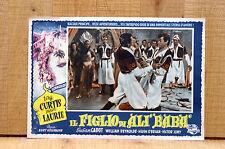 IL FIGLIO DI ALI' BABA' fotobusta poster Tony Curtis Piper Laurie 1952 G34