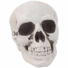 Plastic Human Skull Decor Prop Skeleton Head Halloween Coffee Bars Ornament 1pc