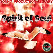 Spirit of Soul - Unique original Multi-Layer Studio Wav Samples Library on Dvd