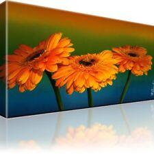Gerbera Blume Bild auf Leinwand mit Keilrahmen / Bilder