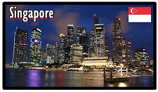 SINGAPORE - SOUVENIR NOVELTY FRIDGE MAGNET - NEW - GIFT / XMAS