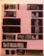 FOTO - PHOTO - LOTTO 22  NEGATIVI  - SCORCI ARCHITETTONICI E NATURALI