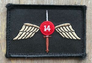4th Battalion 1st Special Forces Group Patch