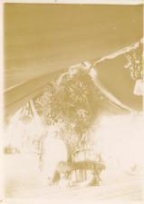 France, Martinique, militaire Français sous le tente, lieu à identifier  Vintage