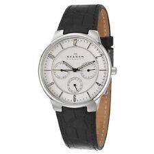 Skagen 331XLSLC4 Stainless Stell Day Date SilverTone Dial Strap Mens Wristwatch