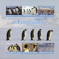 Chad 2017 CTO Penguins 6v M/S Penguin Birds Stamps