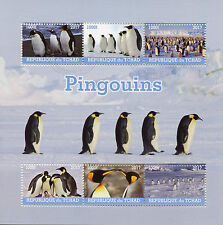 Chad 2017 CTO Penguins 6v M/S Penguin Birds Stamps