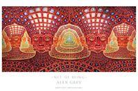 "OFFICIAL ALEX GREY ""Net of Being"" Poster Print yoga spiritual meditation"