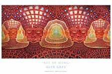 "OFFICIAL ALEX GREY ""Net of Being"" Poster Print Chakra yoga spiritual meditation"