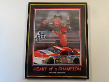 "Dale Earnhardt Jr. NASCAR L'il Pro 8""x10"" Framed Picture - Heart Of A Champion"