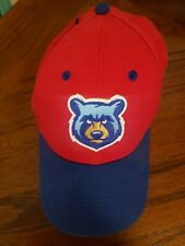 Tennessee Smokies NEW ERA Hat  Adjustable
