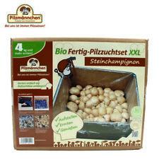 XXL Bio Steinchampignon 10 Kg große Kultur, komplettes Pilzzuchtset  zum züchten
