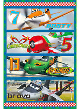 COPERTA PLAID IN PILE LETTINO 100X150 cm DISNEY PLANES FLY  [7209]