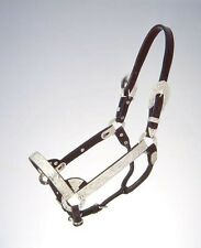 Horse & Mule Silver Showmanship Halter COMPLETE SET with BONUS chain end Lead