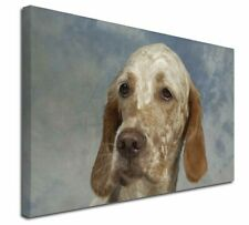 More details for english setter x-large 30
