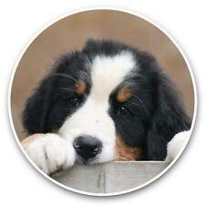 2 x Vinyl Stickers 30cm - Cute Bernese Mountain Dog Puppy  #44758