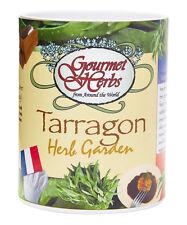 Gifts That Bloom, Tarragon Gourmet Herb Garden GroCan Blooms - Gift Grow Can