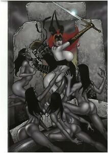 Tarot Witch of the Black Rose 105 SKYCLAD Ltd signed by Jim Balent NM with COA