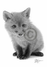 CAT AND DUCKLING Pencil Drawing Print A4 only signed by artist Gary Tymon