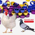 50 PCS Aluminium alloy Closed-loop Bird Leg Bands Parrot Canary Color-random