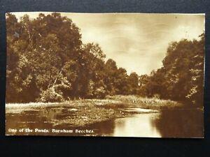 Buckinghamshire BURNHAM BEECHES One of the ponds c1931 RP Postcard