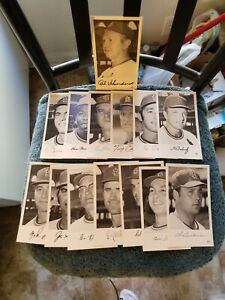 1972  ST. LOUIS CARDINALS LOT OF (14) TEAM ISSUED PLAYER PHOTOS DON CLENDENON