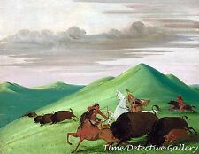 Buffalo Chase, Bull Protecting Cow & Calf by George Catlin - Historic Art Print