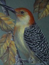 Red-Bellied Woodpecker bird wildlife print of painting