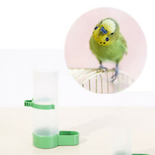 Plastic squirrel bird seed water feeder tube garden indoor outdoor green &wh SL