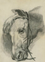 F.R.H - 1914 Charcoal Drawing, The Wistful Horse