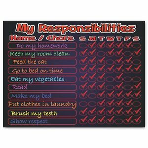 My Responsibilities Chart - Magnetic Dry Erase Board For Kids (Black & Red)