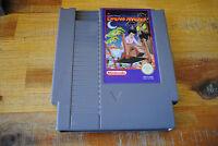 Jeu DREAM MASTER pour Nintendo NES