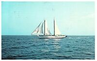 Schooner Mary Day Weekly Maine Cruise Postcard Posted Rockland 1972