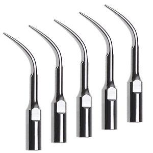 5X Dental Ultrasonic Scaler Tips Scaling Tip GD4 For DTE Satelec Handpiece UK