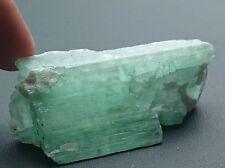 Kunzite verte / hiddénite 195 carats - Natural green kunzite spodumene rough